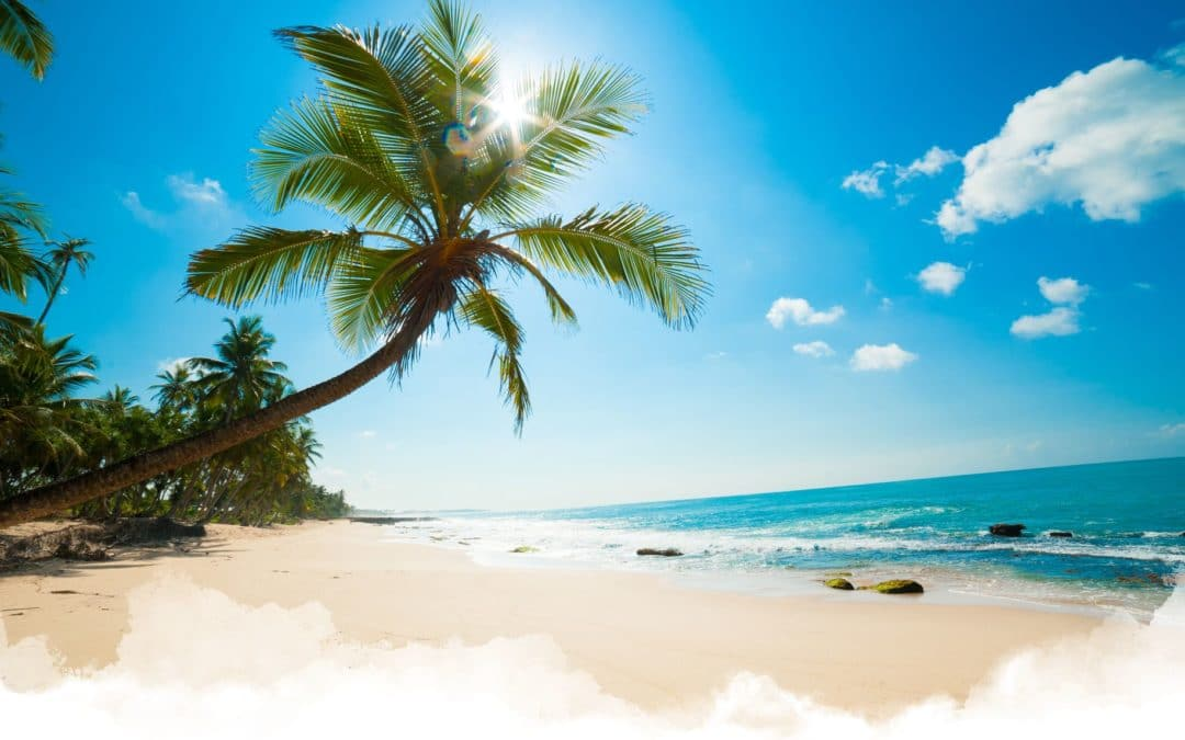 Dominican Republic Vacation Planning